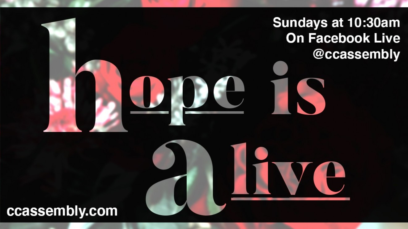 Hope Is Alive!