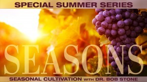 Summer Series: Seasons