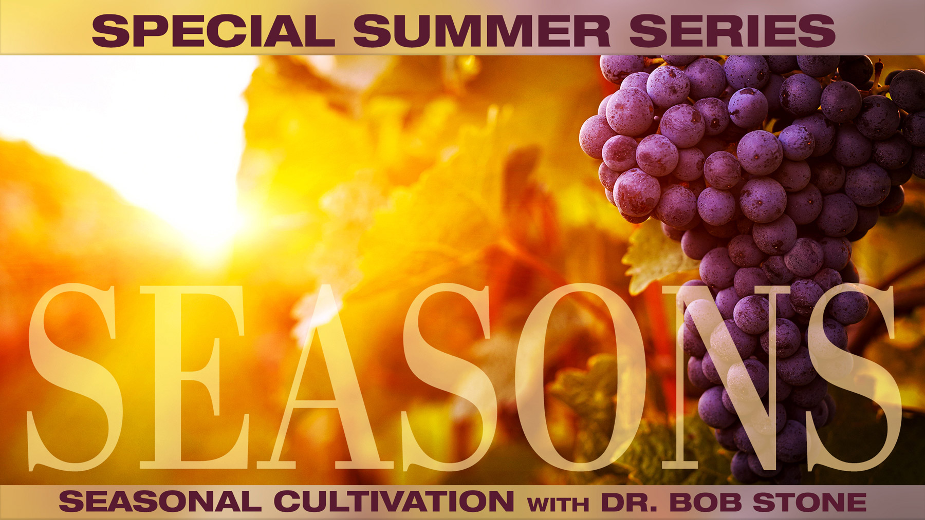 Seasons: What Does It Take to be Growing Roots of Maturity Throughout the Seasons?